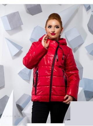 Жіноча куртка з капюшоном на осінь Жіноча куртка з капюшоном на осінь eb4c16782ff4a