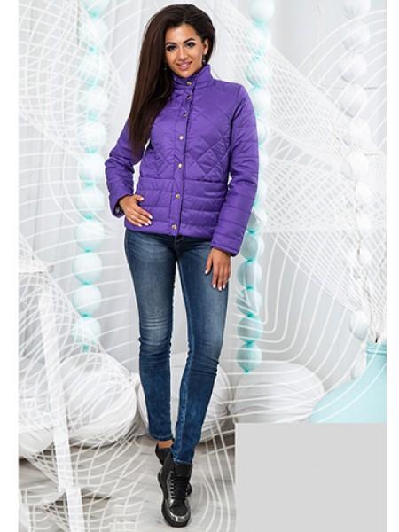 Модна коротка жіноча куртка на блискавці з коміром стойка 823707-11 ... ed5948ac5a561