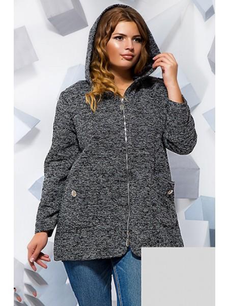 Коротке демісезонне пальто на блискавці з капюшоном a8eeba38343e5