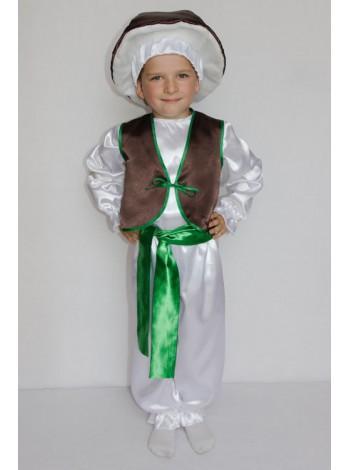 Карнавальный костюм гриб Боровик (мальчик)
