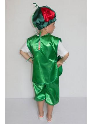 Карнавальный костюм Арбуз №1