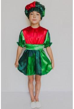 Карнавальний костюм Кавун №2